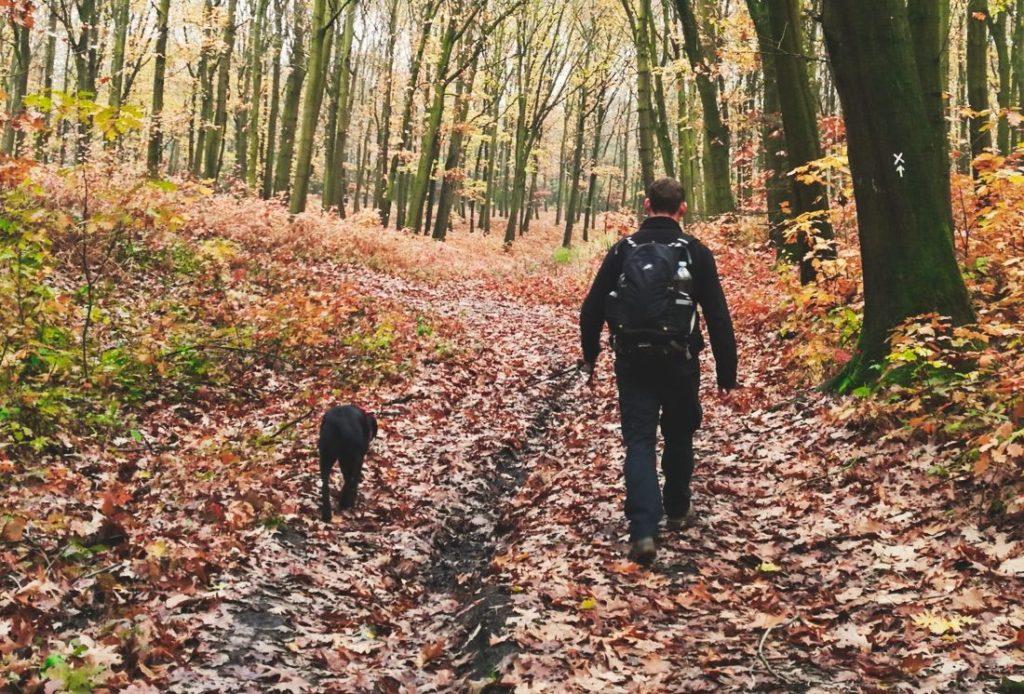 So lange kann ein Spaziergang mit meinem Labrador dauern.
